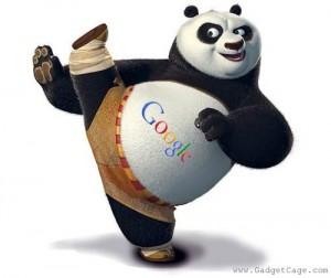 Googe Panda Update
